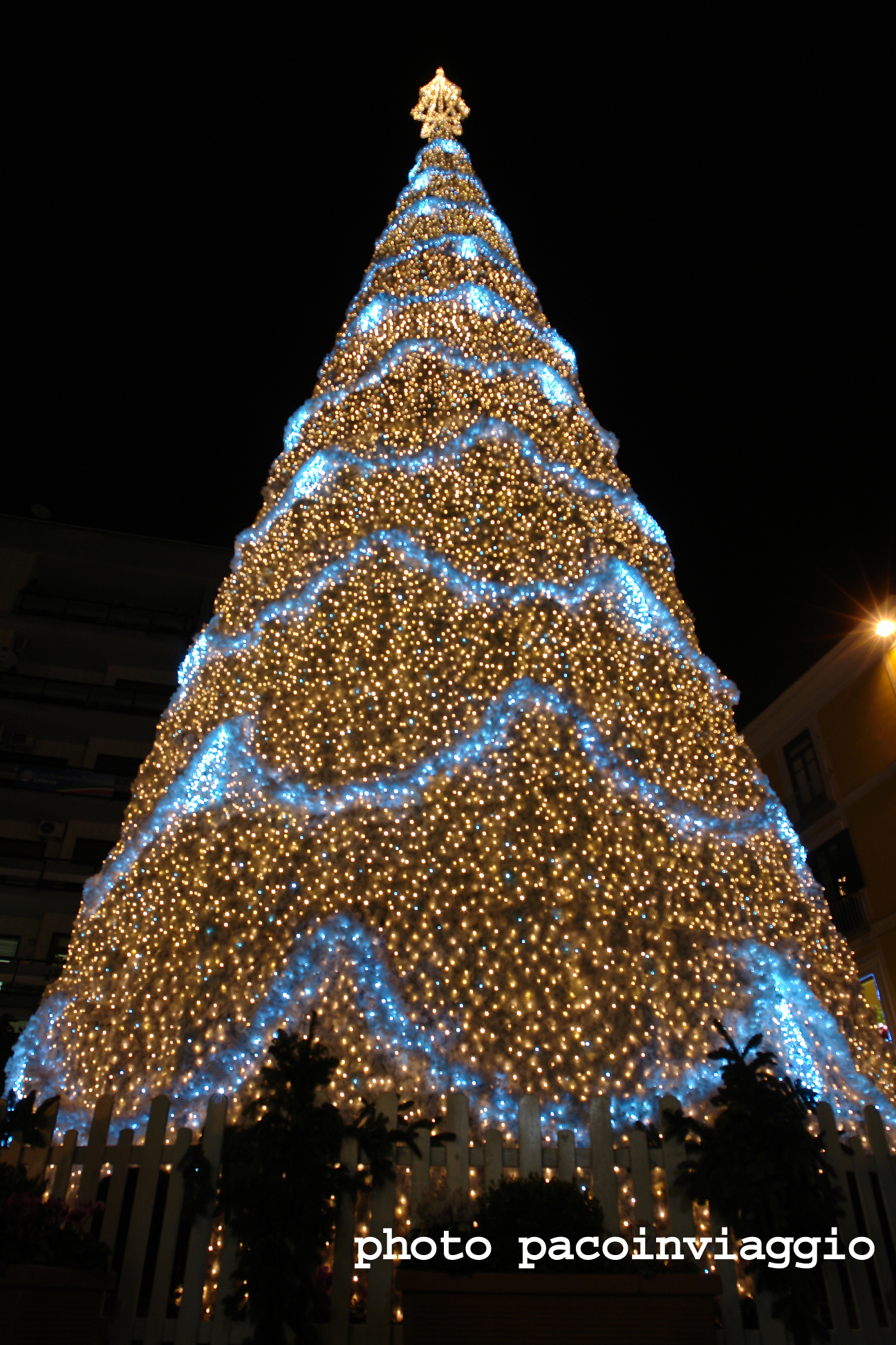 salerno: il giardino incantato ? pacoinviaggio - Illuminazione Alberi Natale