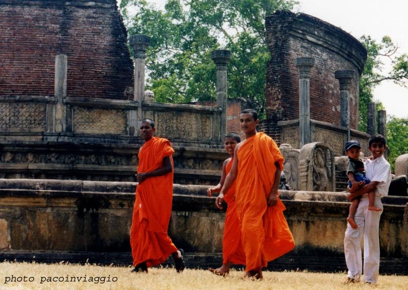 srilanka8 new